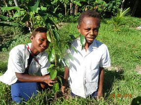 色々な種類を植えることができ、木の種類や使い方 についても学びました
