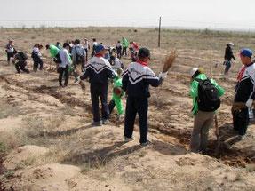 乾いた大地に緑が広がるように、 皆で協力しながら植林しています