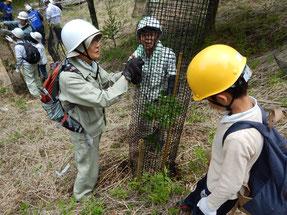 さまざまな国籍・年代の参加者が共に活動した(富士山の森づくり)