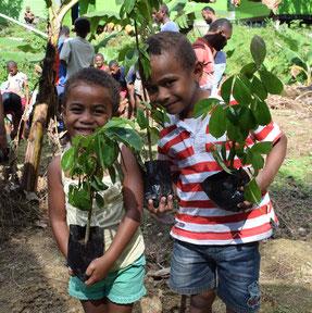 木を植えながら、ふるさとの自然について学んでいます