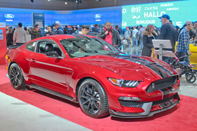 La photo qui servi à la réalisation du dessin