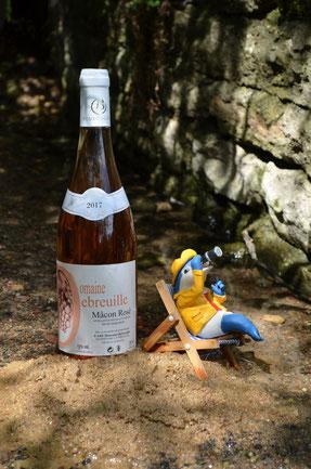 bouteille, mâcon rosé, plage, été