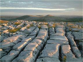 Die karge Landschaft der Burren