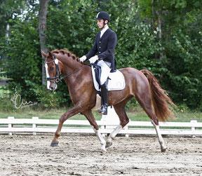 """Mein Name ist Bjorn Claus. Seit vielen Jahren bin ich Pferdewirt, Schwerpunkt """"Reiten"""", Ausbilder und Trainer der FN.  Am 08.02.1984 bin ich in Dronten, Niederlande geboren.  Bereits als Jugendlicher fand ich so viel Spaß an den Pferden, dass ich in ein"""