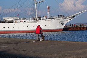 fishing in the harbour of Stralsund in front of the Gorch Fock