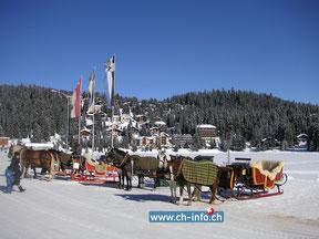 winterwandern schweiz