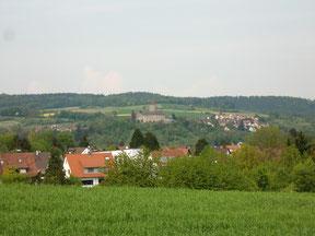 Blick auf Oppenweiler vom Staigacker aus