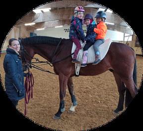 reiten, pferd, fachsenfeld, reitverein, springen, dressur, reitstunde, voltigieren, volti, kind, mädchen