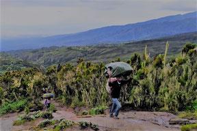 Dauer der Rongai Route am Kilimandscharo
