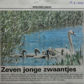 Artikeltje Ommelander Courant 18 juni 2020