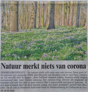 Berichtje in Ommelander Courant