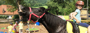 Kunterbuntes Ponypainting bei Ponykerstin