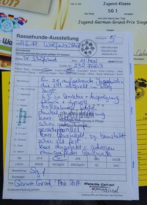 Cora von Zollverein, Richterbericht