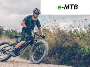 Testsieger e-MTB
