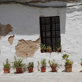 Ibiza - Haus-Bau und Haus-Renovierung
