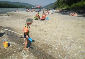 Am nächsten Tag: Der Donaustrand an der Pielach-Mündung