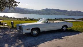 Cadillac mit Sicht ab Honeriweid auf den Hallwilersee