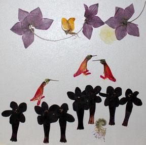 Blütenkunst pressed flowers floralart Kunstwerk aus echten Blüten
