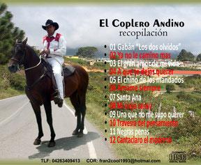 Chico El Coplero Andino
