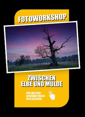Fotoworkshop Gartenträume im Dessau-Wörlitzer Gartenreich mit Sebastian Kaps