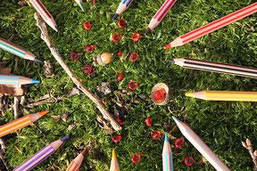 Les crayons de couleurs de l'illustratrice Cloé Perrotin lors d'un shooting photos