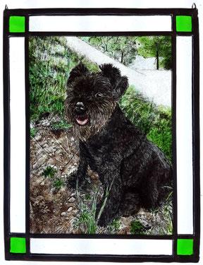 Haustier-Portrait