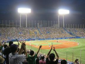 Tokyo Baseball Tour