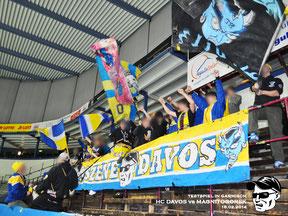 15.02.2014 HC Davos vs. Magnitogorsk
