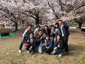 桜の木の下でBBQ