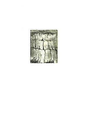 incisione originale di Bruno Biffi (misura lastra 115x95 mm)