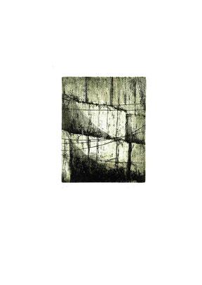 incisione originale di Bruno Biffi (misura lastra 155x122 mm)
