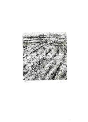 incisione originale di Bruno Biffi (misura lastra 130x118 mm)