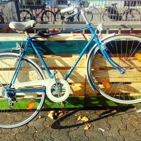 Fahrrad Bornheim