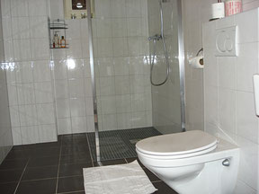 The spacious bathroom has a very convenient walk-in shower barrier-free