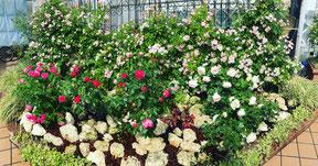 ばら ガーデン