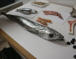 Alimentos del Mar, Exposición
