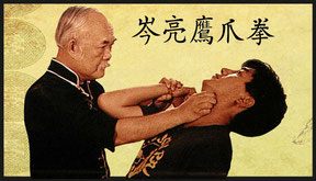 Ying Jow Pai Eagle Claw Kung Fu New York City Yingjowpai