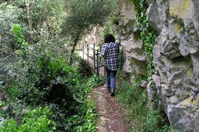 Gorges St. Jaume