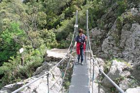 Hängebrücke über den 'El Llobregat'