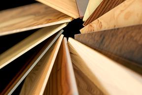 Holzkunde Holzlexikon