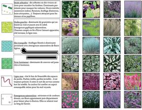 Avant-projet - Palette végétale