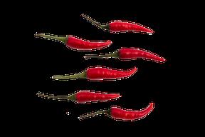 Thailändische frische rote Chilis