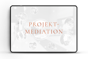 Projektmediation