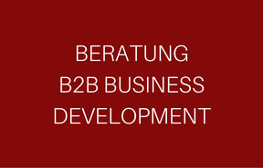 Beratung B2B Business Development