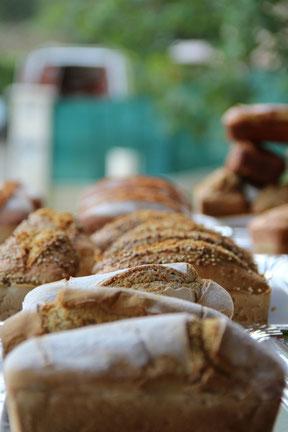 le pain sans gluten du pain des autres