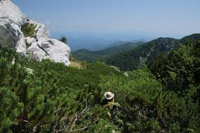 Experience Wilderness NP Risnjak - Kroatien