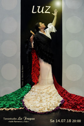 "Titelfoto zur Flamenco-Tanzaufführung ""LUZ"" mit Rosa Martínez am 14.07.18 im Tanzstudio La Fragua / Color-Foto by Boris de Bonn"