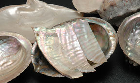 *This crafting uses mainly abalone shellfish that has beautifully iridescent shimmer of a rainbow.