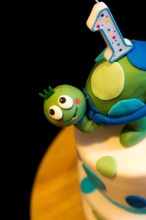 Kindergeburtstag - Torte für einen Jungen mit Schildkröte