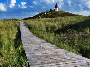 Bohlenweg auf der Insel Amrum